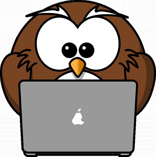 Owl at computer